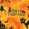 Halloween Và Từ Vựng Liên Quan Trong Tiếng Anh