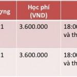 Khoa hoc tieng anh, lich khai giang thang 4 - 2013